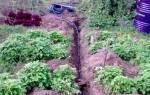 Летний водопровод на даче из полипропиленовых труб