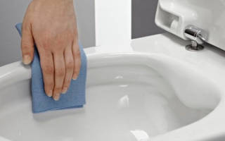 Как очистить унитаз от камня
